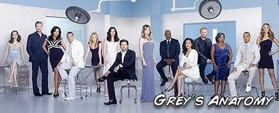 Descargar Grey´s Anatomy S07E02 7x02 702