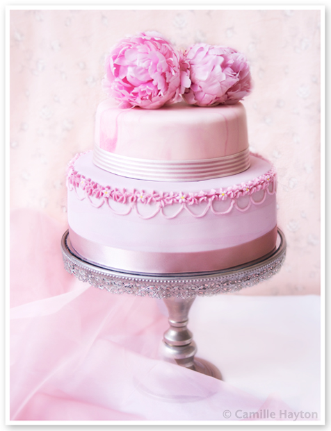 Peony Roses Romance and The Wedding Cake