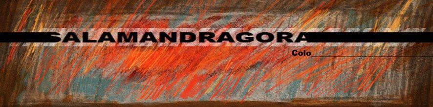 Salamandragora