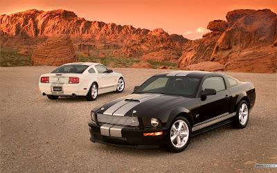 Ford Mustang Wallpaper Nice Car