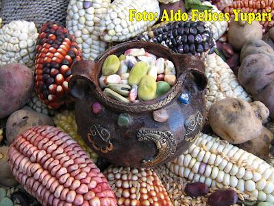 Nuestros riquísimos y nutritivos alimentos de Sarhua