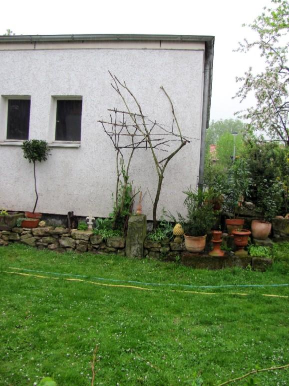 garten anders individuelles kletterger st f r pflanzen es geht nur im eigenbau. Black Bedroom Furniture Sets. Home Design Ideas