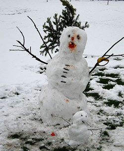 cleft palate snowman