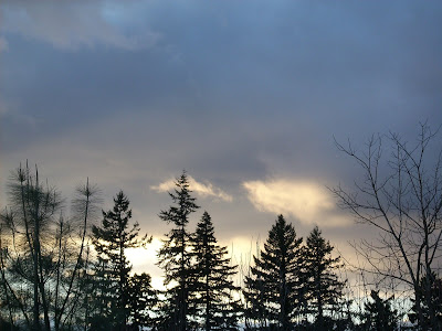Sybellas Sky