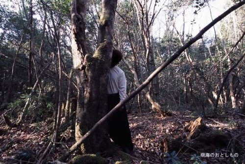 Aokigahara-forest-of-suicides-017.jpg