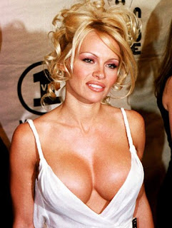 SEXY500PICTURES: HOT BOOBS PICTURE OF PAMELA ANDERSON
