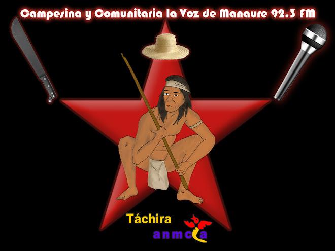 LA VOZ MANAURE DE TACHIRA