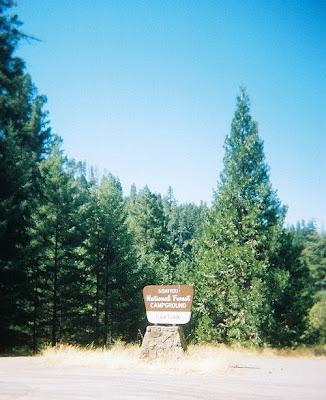 Cave Creek campground sign Siskyou National Forest Oregon