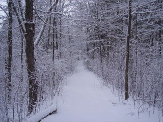 photo of Sawcut Notch Trail, Eastern Blue Hills, Quincy, MA