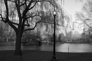 photo of Public Garden, Boston, MA