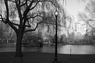 photo of Public Garden, Boston, MA