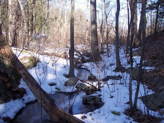 photo of stream near Wilson Mountain, Dedham, MA