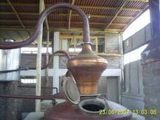destilando pisco