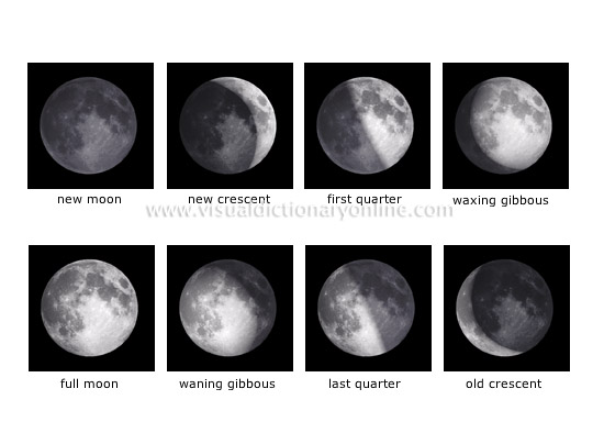 moon phases in order. 8 moon phases in order