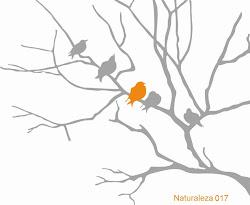 Naturaleza 017 - Enramado con 5 pájaros Nuevo!