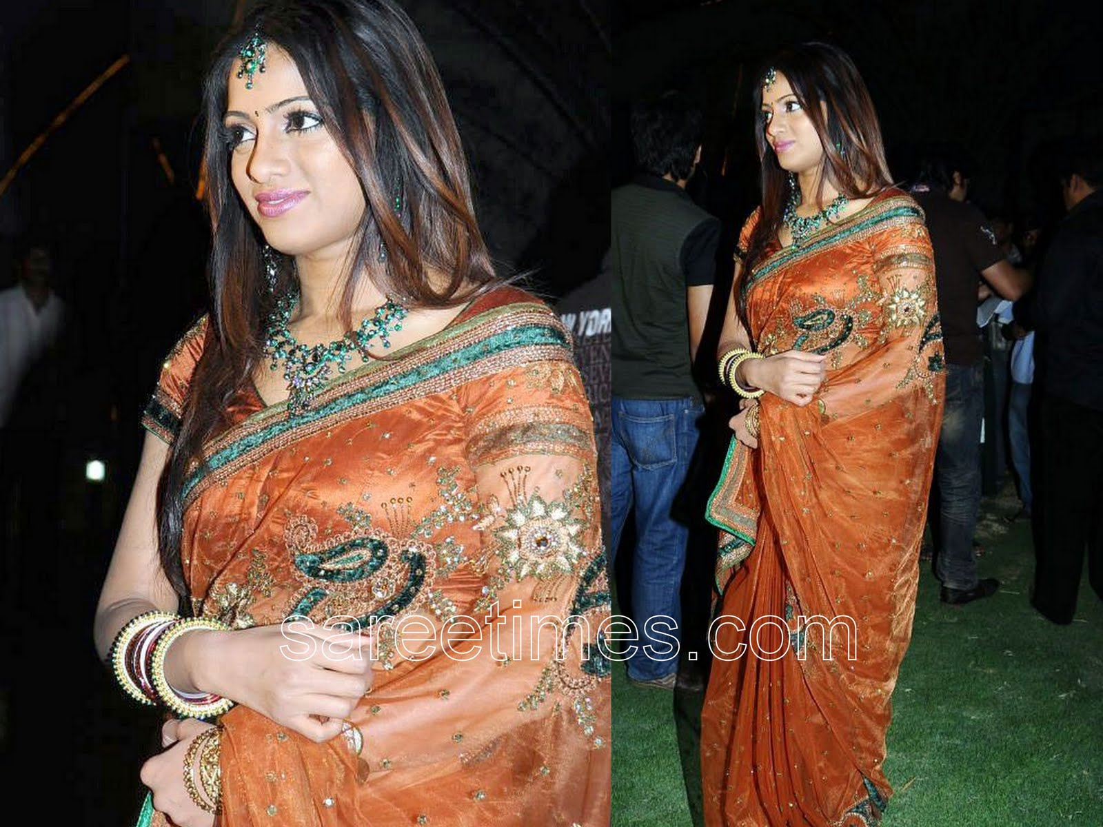 uday bhanu in embroidery saree | sareetimes.com-daily dose of latest ...