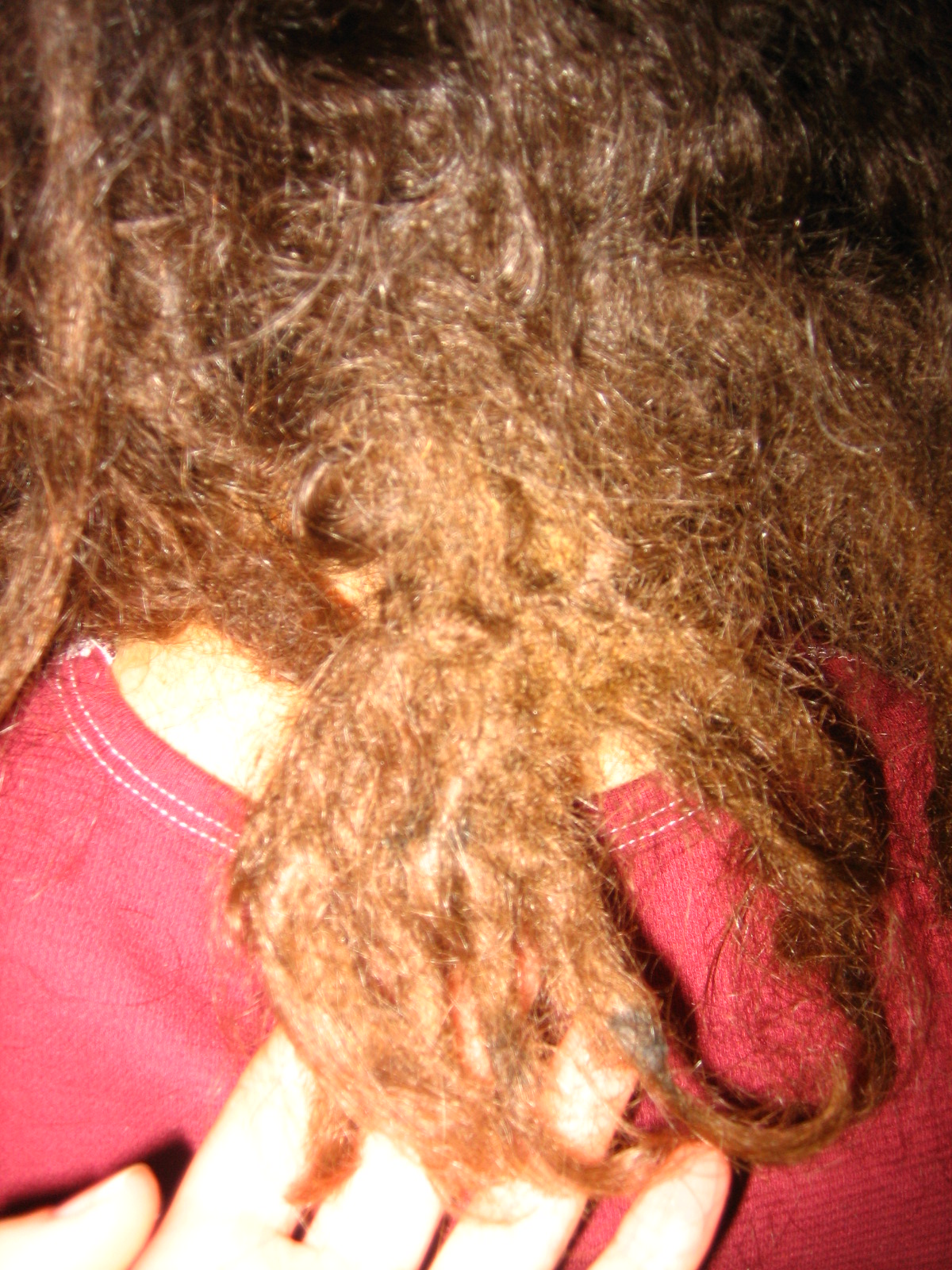 Dreadlock repair and reconstruction dreadlocks major joining biocorpaavc Image collections
