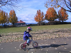 Julia Training Wheels