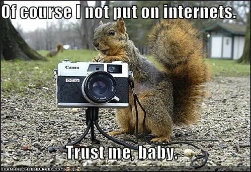 Silly Squirrel