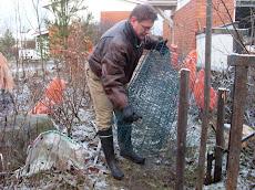 Vierasperäiset rusakot puutarhojemme vaarana