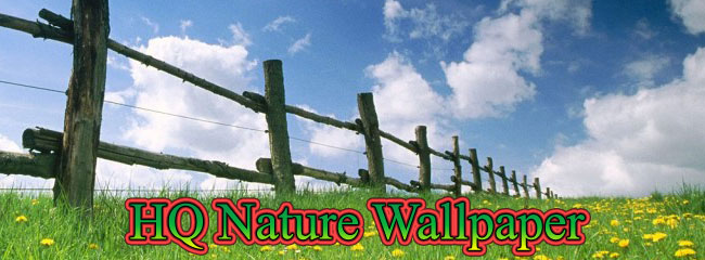 high quality nature wallpapers. High Quality Nature Wallpaper
