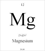 12 Magnesium