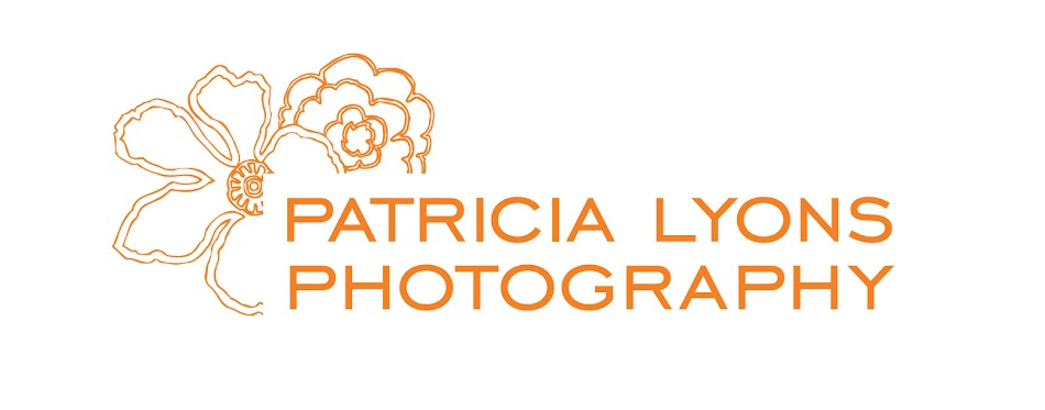 Patricia Lyons Photography
