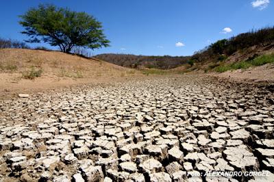 Mud crack geologia. iuvcs keygen.