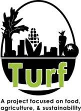 Turfnews