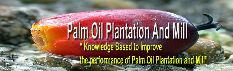 Best Solution for Palm Oil Plantation and  Mill
