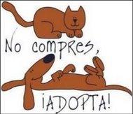 No COMPRES, ADOPTA =)