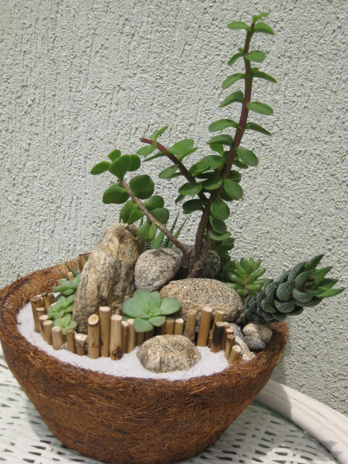 mini jardins em vidro : mini jardins em vidro:Claudio Lourenço Paisagismo: Mini-Jardins de Suculentas em Jarro de