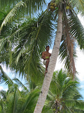 Traditional Use of Coconuts