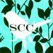 Songbird Cotton Co