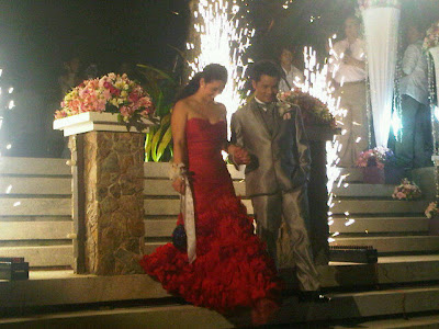 �startriga ogie alcasid and regine velasquez wedding photos