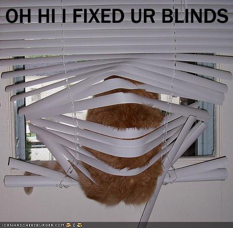 OH HI I FIXED UR BLINDS