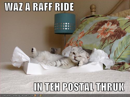 WAZ A RAFF RIDE IN TEH POSTAL THRUK