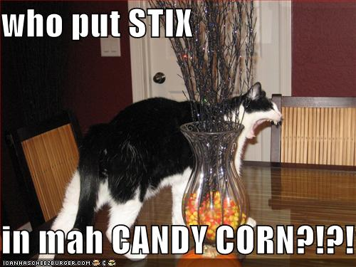 who put STIX in mah CANDY CORN