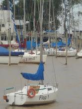 Mi segunda casa el Puerto de Olivos