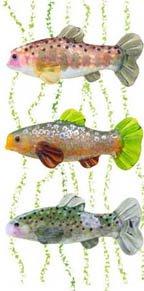 Fish Beads and Spirituality