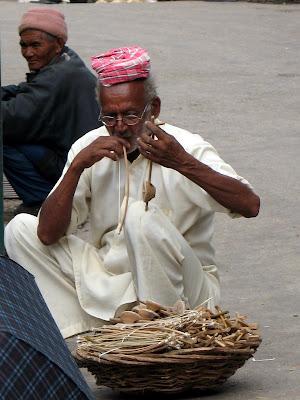 Músico en Mc Leod Gang/Upper Dharamsala