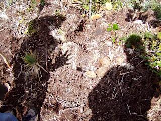 Chontabamba, Cerro de Pasco. Perú. Sombras la Frau & yo