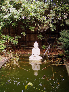 Vista desde el salón Little Buddha