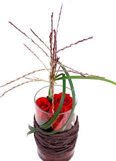 röd ros Endless Love, gräs Miscanthus Rotfeder