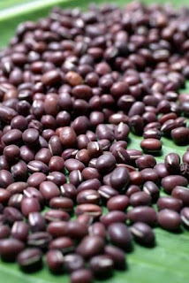 Benefits And Usefulness Red Beans Red Beans Kacang Merah