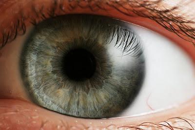 El ojo humano: características y defectos de la visión