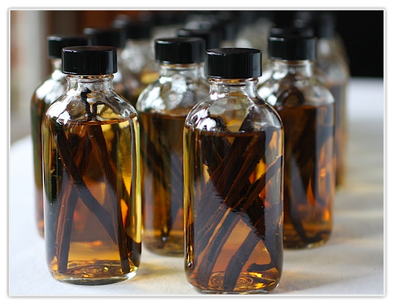 Savings School: Budget Friendly Gift Giving- Homemade Vanilla Extract
