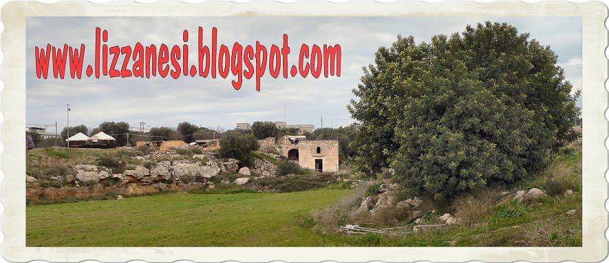 www.lizzanesi.blogspot.com