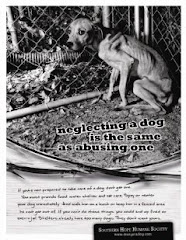 "Learn About the ""Don't Get A Dog"" Campaign"