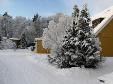 Vinter i skälby/ Invierno en skälby